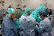 L'equip durant una intervenció quirúrgica per corregir el prolapse uterovaginal.